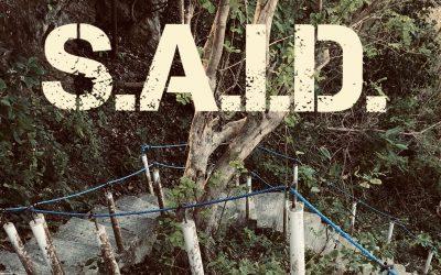 Said S.A.I.D to the 350 Steps!